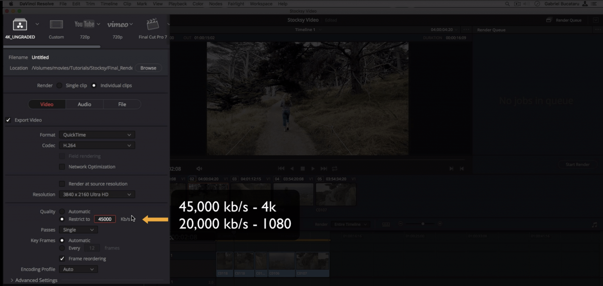 Davinci Resolve Tutorial - Intro to Our Recommended Workflow